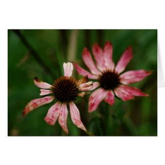 Carte de voeux de mort de fleurs