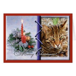 Carte de voeux de Noël de chat du Bengale