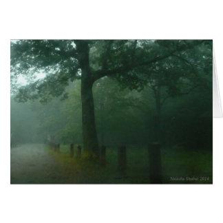 Carte de voeux de PAIX, arbres verts, brume