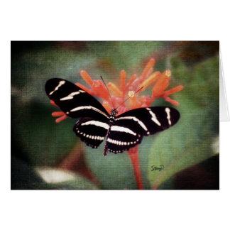 Carte de voeux de papillon