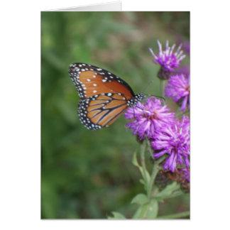 Carte de voeux de papillon et de fleur sauvage