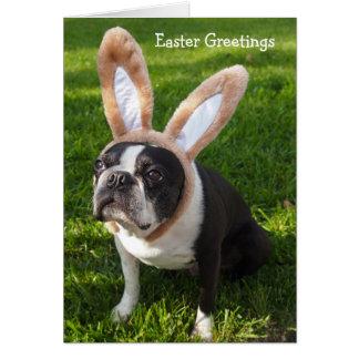 Carte de voeux de Pâques de lapin de Boston