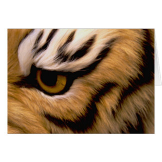 Carte de voeux de photo de tigre