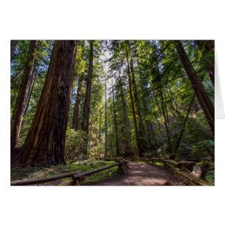 Carte de voeux de séquoias de Californie