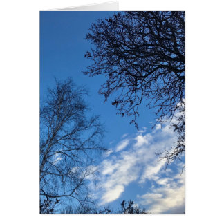 Carte de voeux de silhouette d'arbre de ciel bleu