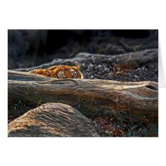 Carte de voeux de tige de tigre