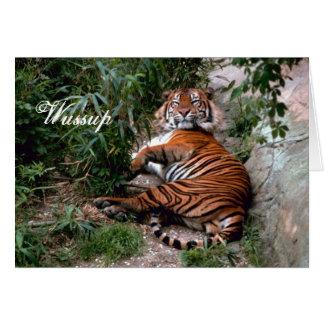 Carte de voeux de tigre