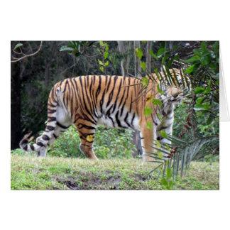 Carte de voeux de tigre de Bengale