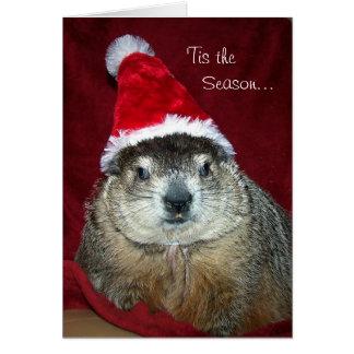 Carte de voeux de vacances de Groundhog Clara