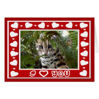 Carte de voeux de Valentine de chat du Bengale et