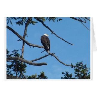 Carte de voeux d'Eagle