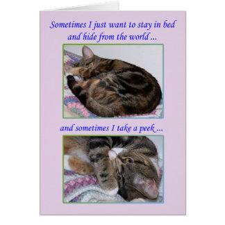 Carte de voeux d'encouragement, photos d'un chat