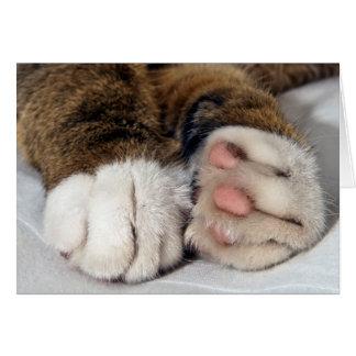 Carte de voeux des pattes du chat