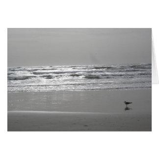 Carte de voeux d'Oceanview