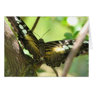 Carte de voeux d'or de papillon
