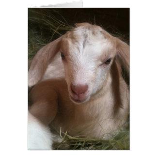 Carte de voeux d'or d'enfant de chèvre