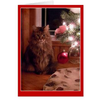 Carte de voeux d'ornements d'arbre de chat et de N