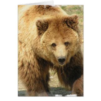 Carte de voeux d'ours gris