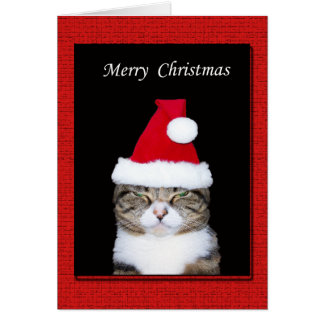 Carte de voeux drôle de Noël, chat avec le
