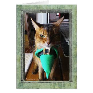 Carte de voeux du jour de St Patrick de chat de