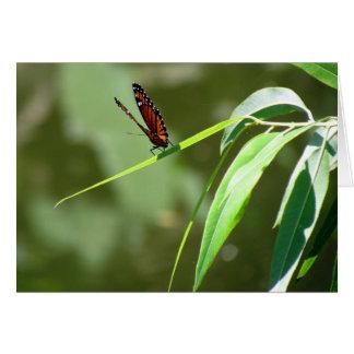 Carte de voeux du papillon de monarque (4088)