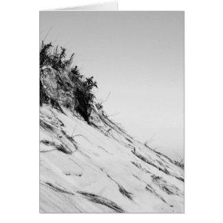 Carte de voeux dunaire de plage sereine (blanc à