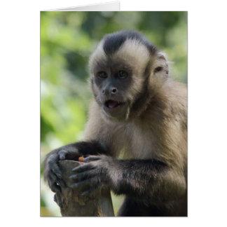 Carte de voeux espiègle de singe