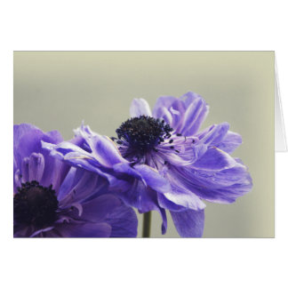 Carte de voeux florale pourpre de photographie