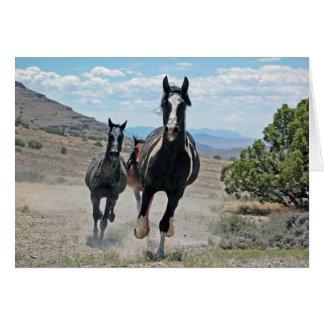 Carte de voeux galopante de chevaux sauvages