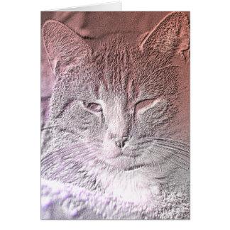 Carte de voeux gravée à l'eau-forte de chaton