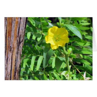 Carte de voeux jaune de fleur sauvage