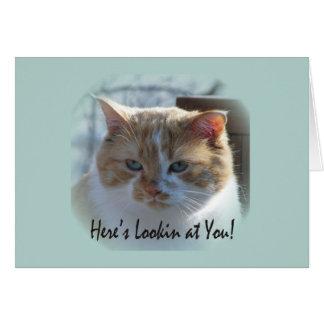Carte de voeux mignonne de vignette de chat