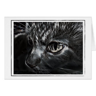Carte de voeux noire et blanche de chat