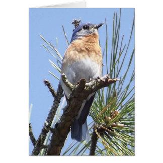 Carte de voeux orientale d'oiseau bleu