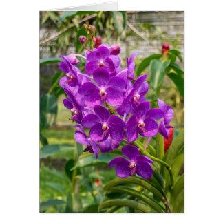 Carte de voeux personnalisable d'orchidée magenta