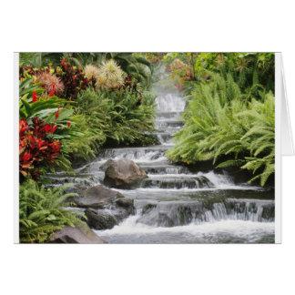 Carte de voeux pittoresque de cascade
