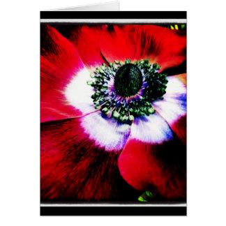 Carte de voeux pourpre et rouge de blanc d'anémone
