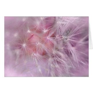 Carte de voeux rose de blanc de pissenlit