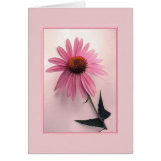 Carte de voeux rose de Coneflower