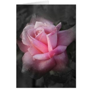 Carte de voeux rose de mystique
