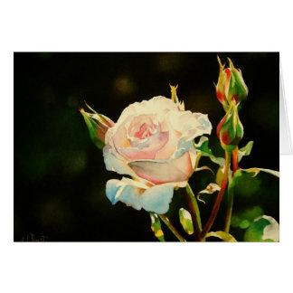 Carte de voeux rose de première lumière