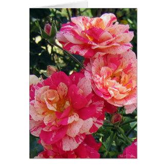 Carte de voeux rose rayée blanche rouge de blanc