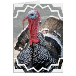 Carte de voeux sauvage d'image de la Turquie