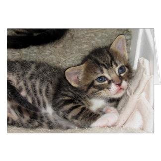 Carte de voeux tigrée adorable