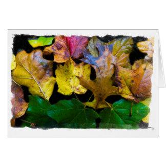 Carte de voeux vierge de feuille d'automne par Tom