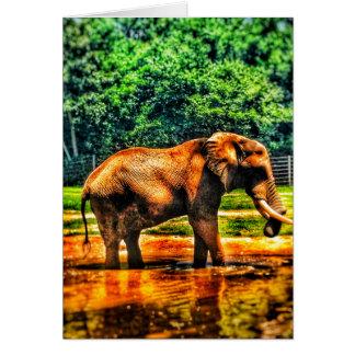 Carte de voeux vierge d'éléphant