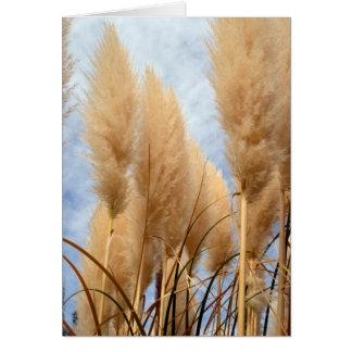 Carte de voeux vierge d'herbes grandes