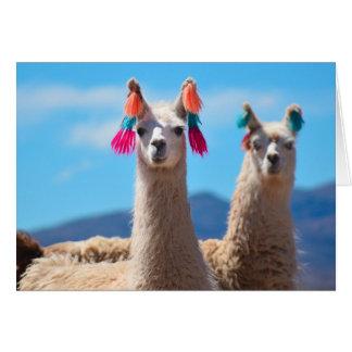 Carte de voeux vierge - lamas