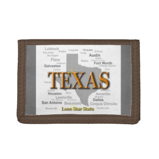 Carte d'état du Texas
