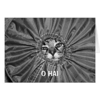 Carte d'O Hai LOLcat